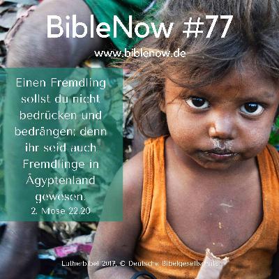 BibleNow #77: 2. Mose 22,20-23,5