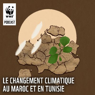 Le changement climatique au Maroc et en Tunisie