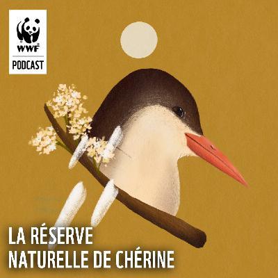 La Réserve Naturelle de Chérine