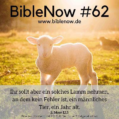BibleNow #62: 2. Mose 11,1-12,17