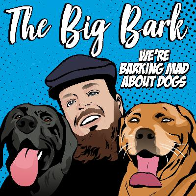 The Big Bark #15 - Chats with the Cork Nose Robert the greyhound