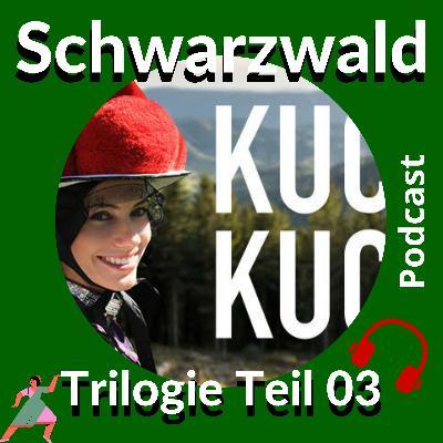 #18: Schwarzwald Trilogie Teil 03 - ein Reise-Podcast von Peter von Stamm