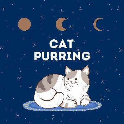 Cat Purring: Relax and Sleep