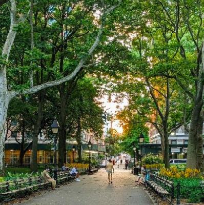 Finding nature in the city: urban ecology during lockdown and beyond