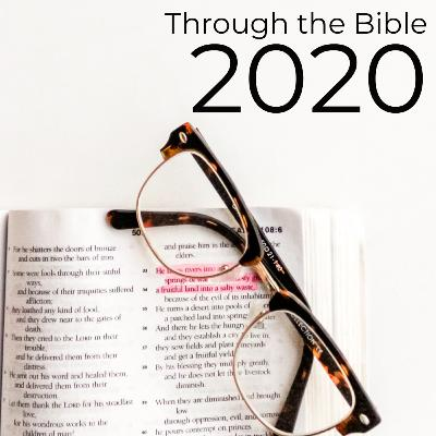 Through the Bible Week Two