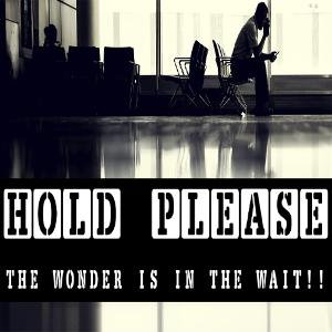 Hold Please!! The WONDER is in the WAIT!