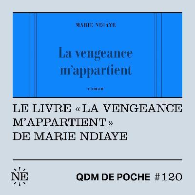 """#120 - Le livre """"La vengeance m'appartient"""" de Marie NDiaye"""