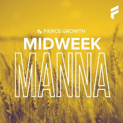 Midweek Manna: You Don't Need to be a Visionary to Fulfill God's Vision