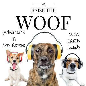 Raise the Woof: Paws With A Cause