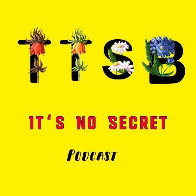 "It's No Secret Podcast ""I'd Rather Be Lost"" Ep. 2"