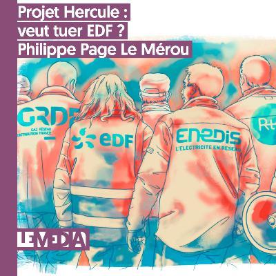 Interpu | Projet Hercule, qui veut tuer EDF ? | Philippe Page Le Mérour