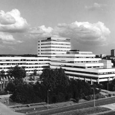 Column Ingmar Heytze: Alles Moet Eerst Verkeerd
