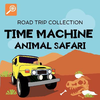Time Machine Animal Safari