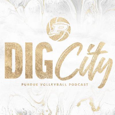 Dig City | Season 2, Episode 3 (Nov. 11, 2020)
