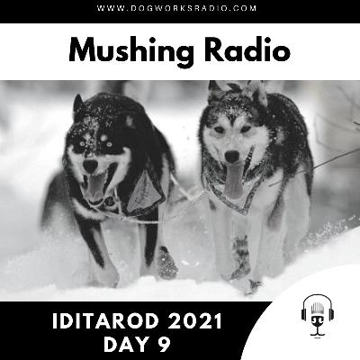 Iditarod 2021 Daily Coverage | Day 9