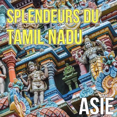 #67 – Splendeurs du Tamil Nadu (Inde)