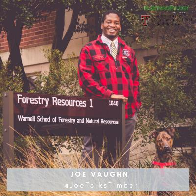 44. Deep Dive- Old Growth Forests w/ Joe Vaughn