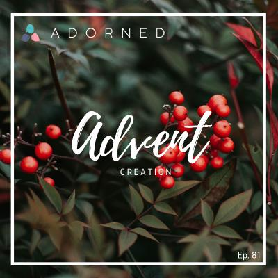Ep. 81 - Advent - Creation