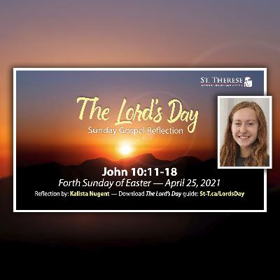 """The Lord's Day"" Gospel Reflection by Kalista Nugent (John 10:11-18, for Forth Sunday of Easter, April 25, 2021)"