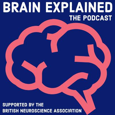 Welcome to Brain Explained!