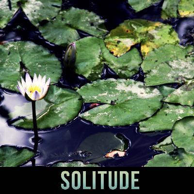 Episode 3: Solitude