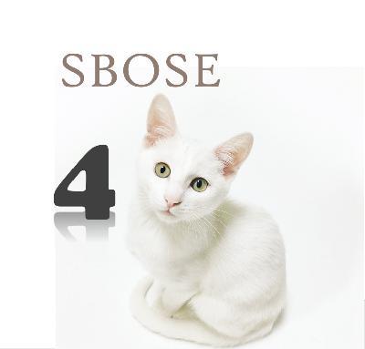 SBOSE Week 4