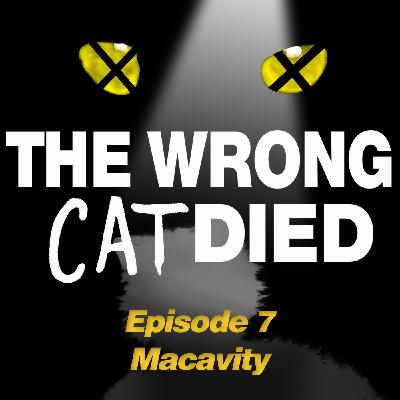 Ep9 - Macavity ('s not there)