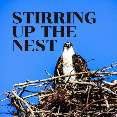Stirring Up The Nest