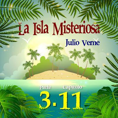 Parte 3. Capítulo 11. Los colonos salen en busca de los presidiarios y del personaje misterioso