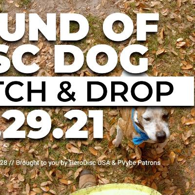 The Sound of DiscDog | Drop & Catch with Obi