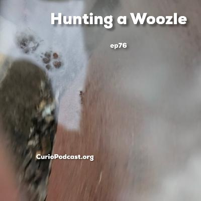 Hunting a Woozle