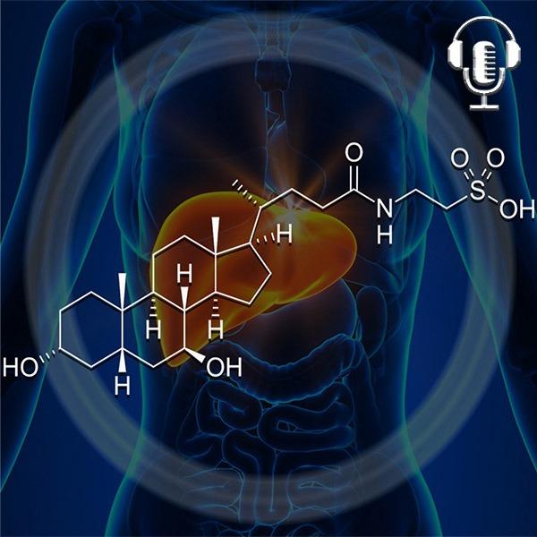 "TUDCA the ""Bear"" of Liver Biohacks - Top 7 Benefits"