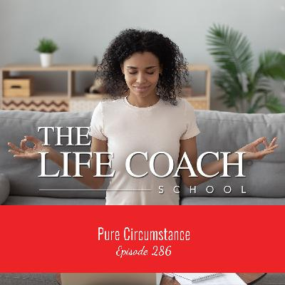 Ep #286: Pure Circumstance