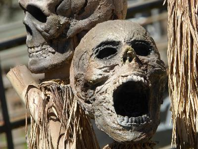 Ep. 354 - The Legend of Screaming Skulls