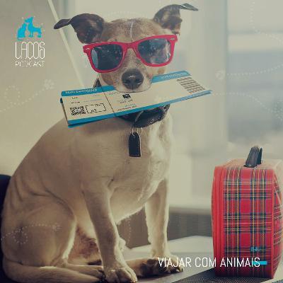 #40: Viajar com Animais