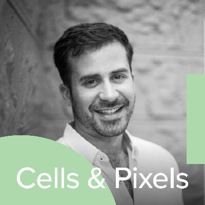 Design tools with Noah Levin – Director of Design, Figma