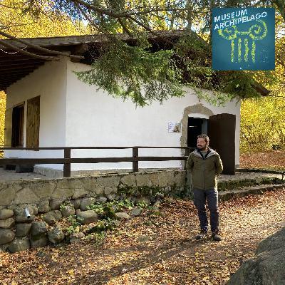 87. The Vitosha Bear Museum Lives in a Tiny Mountain Hut