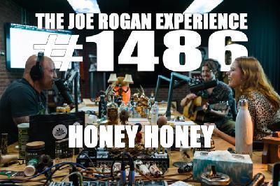 #1486 - Honey Honey