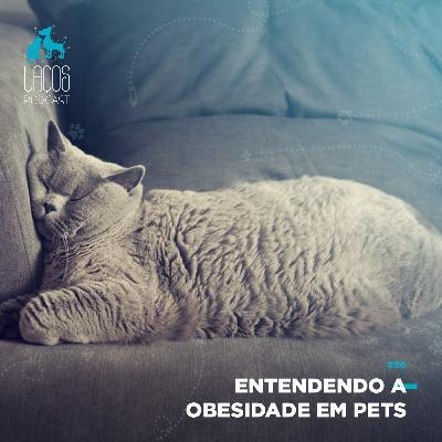 #50: Entendendo a Obesidade em Pets