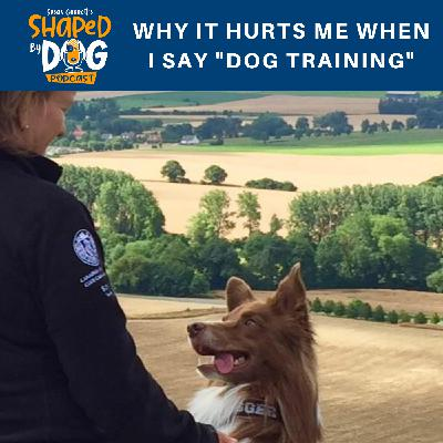 "Why It Hurts Me When I Say ""Dog Training"""