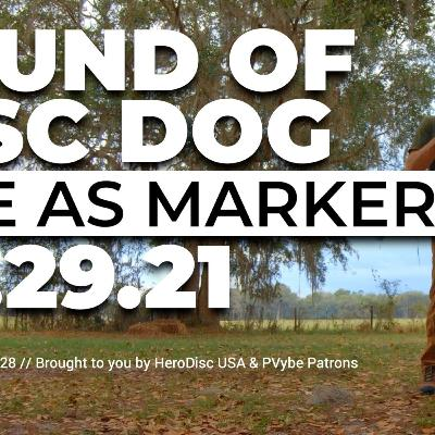 The Sound of DiscDog | Cue as Marker