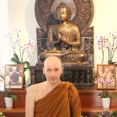 """Not to Kill any Living Being"" - The First Buddhist Precept | Dhamma Talk by Ajahn Dhammasiha"