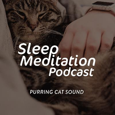 PURRING CAT SOUND - to put you to sleep - Requested episode. Join the waitlist for our upcoming sleep app. Get the sleep you deserve this weekend :)
