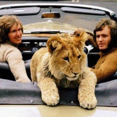 Christian, le lion qui aimait les hommes
