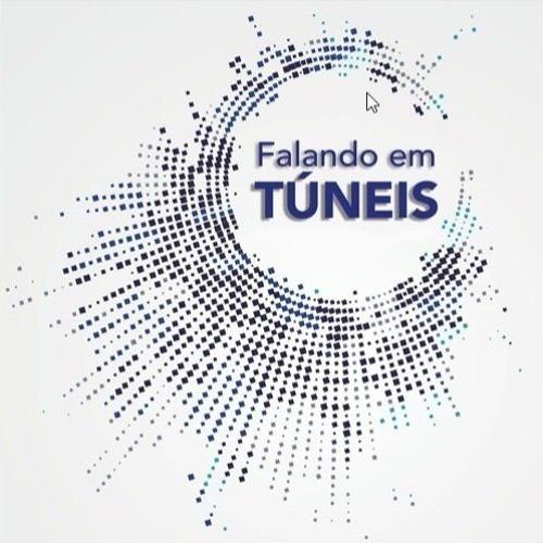 #06 - Tarcísio Barreto Celestino: Livro Esmeralda de práticas contratuais em obras subterrâneas - Podcast Falando em Túneis