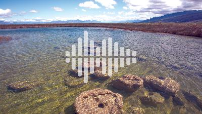 An oasis of biodiversity a Mexican desert, and making sound from heat