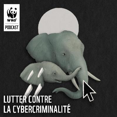 Lutter contre la cybercriminalité