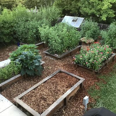 045 Feed Your Soil - The Cool Season Garden Edition