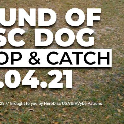 The Sound of DiscDog | Drop and Catch with Obi 04.04.01