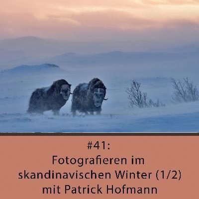 Fotografieren im skandinavischen Winter (1/2) - mit Patrick Hofmann